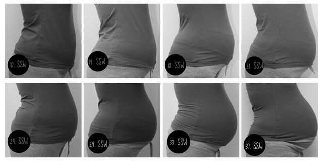 Schwangeren Bauch jeden Monat fotografieren, hat jemand
